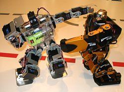 Бои роботов-андроидов