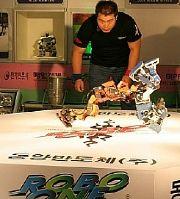 ROBO-ONE 2006
