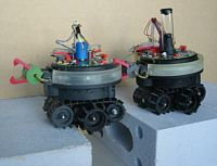 Swarm-bots