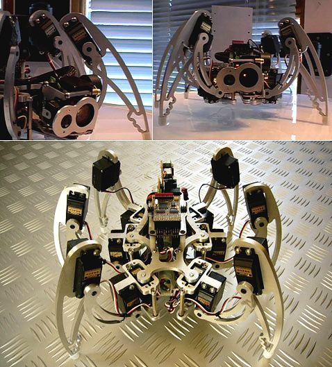 iC Hexapod Мэтта Дентона