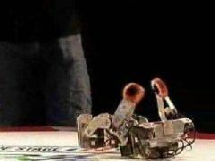 Robo-One Grand Championship 2007
