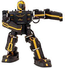 робот RoboPhilo