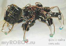 Робот-муравей BILL-Ant