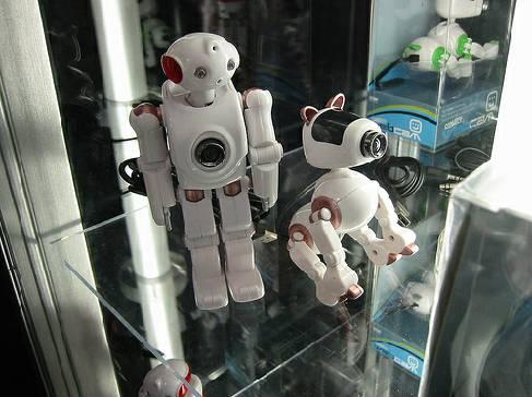 Роботы web-камеры