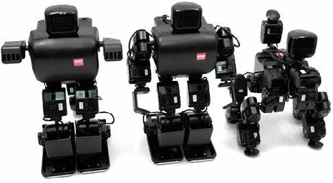 Корейский конструктор роботов RoboBuilder