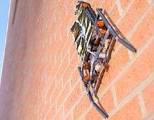 Робот создает электростатические заряды между корпусом и стеной, которые и удерживают его от падения.