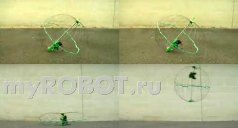 Jollbot - прыгучекатящийся робот