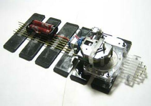 робот-улитка RoboSnail